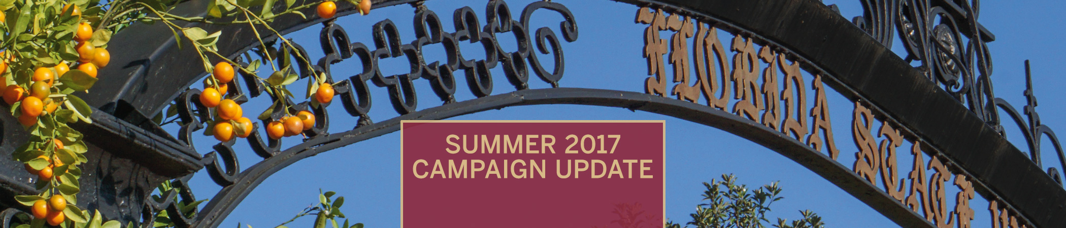 Raise the Torch Summer 2017 Campaign Newsletter